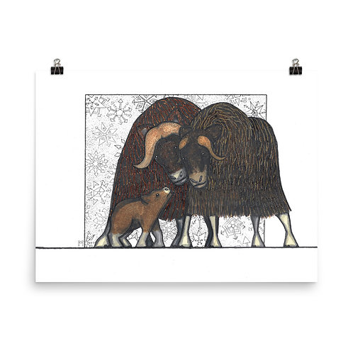 Musk Ox Family Poster