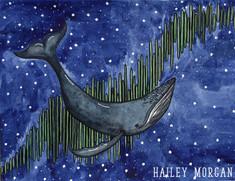 Aroura Whale