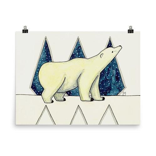 Polar Nights Poster