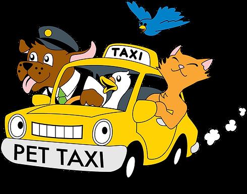 Taxi dog per i vostri amici a 4 zampe