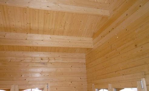 ceiling comp 2.jpg