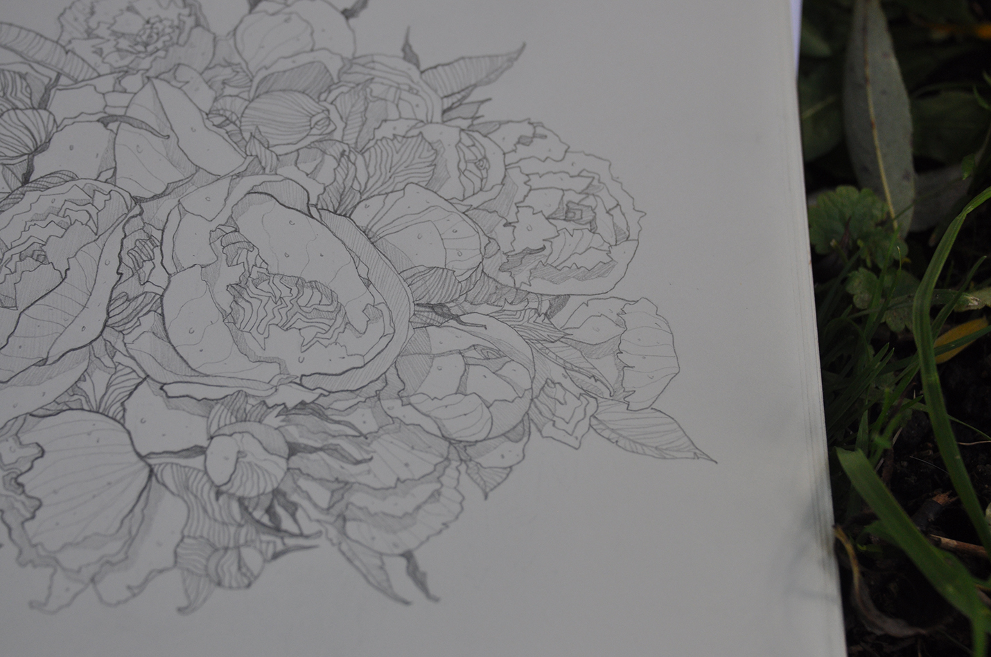карандашный скетч 4