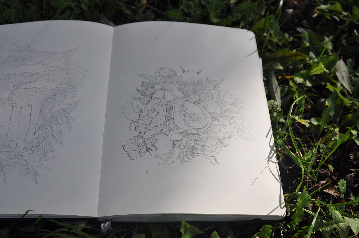 карандашный скетч 3