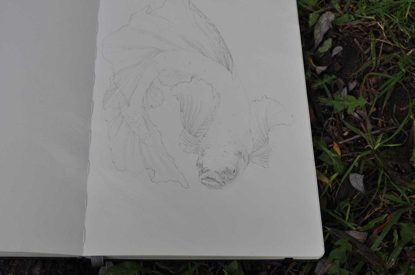 карандашный скетч 10