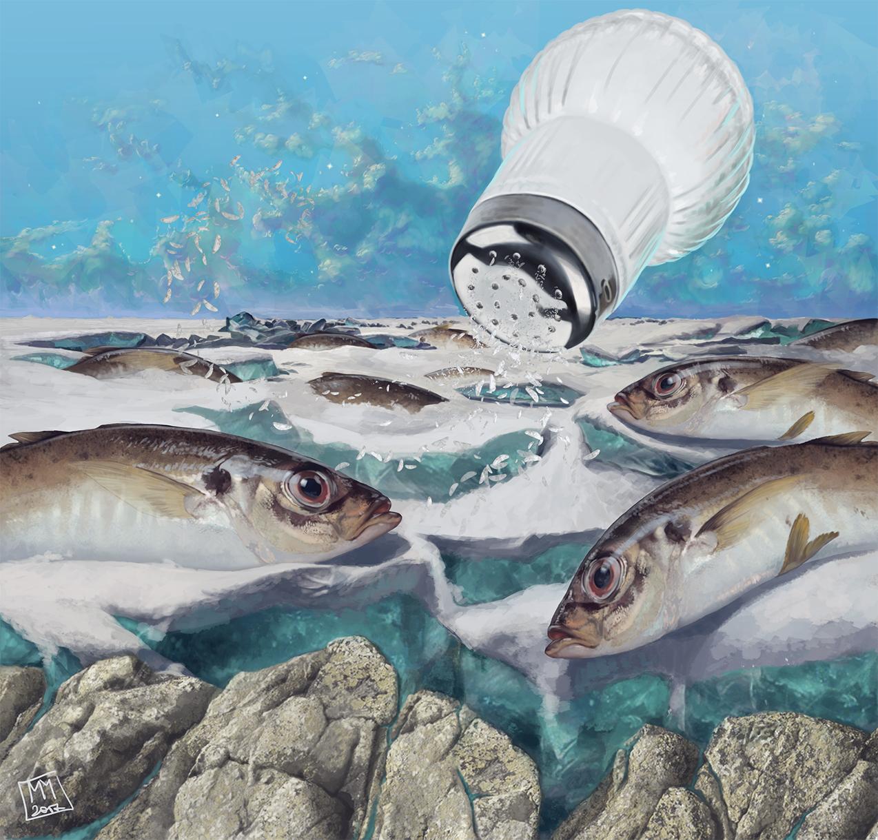 рыбы на льду