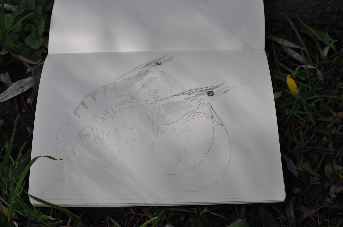 карандашный скетч 8