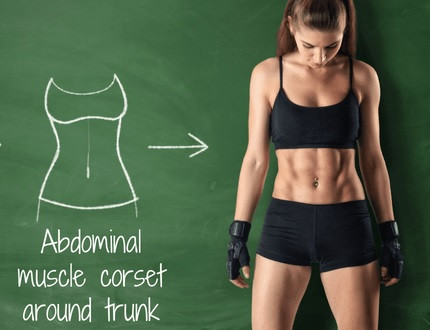 """Abdominal muscle """"corset"""" around the trunk"""