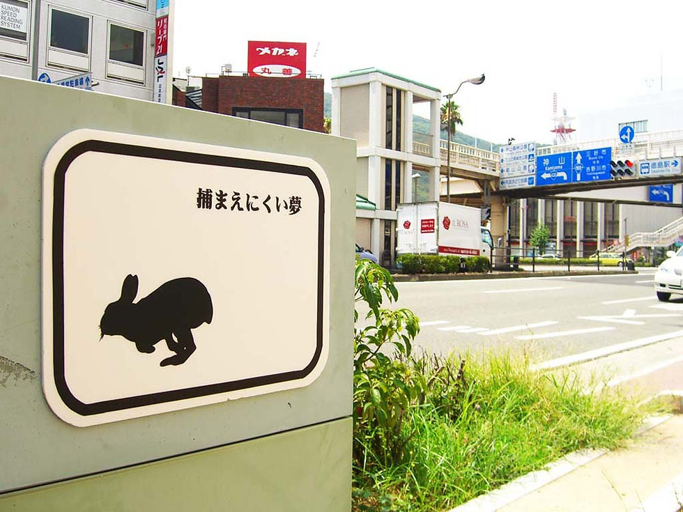 lo-res_Urban Animals 02_2008-Japan_02.jp