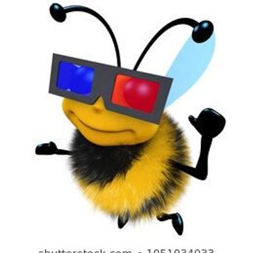 Videos On Bees