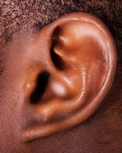 his ear.jpg