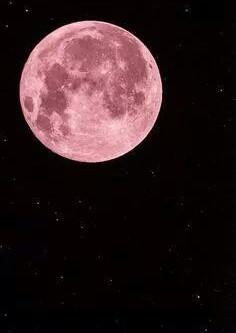 Les vœux de la nouvelle lune