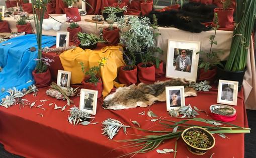 Yaanga Vive! Altar featuring California native plants