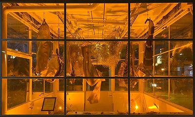 Installation  - Night light11.jpg