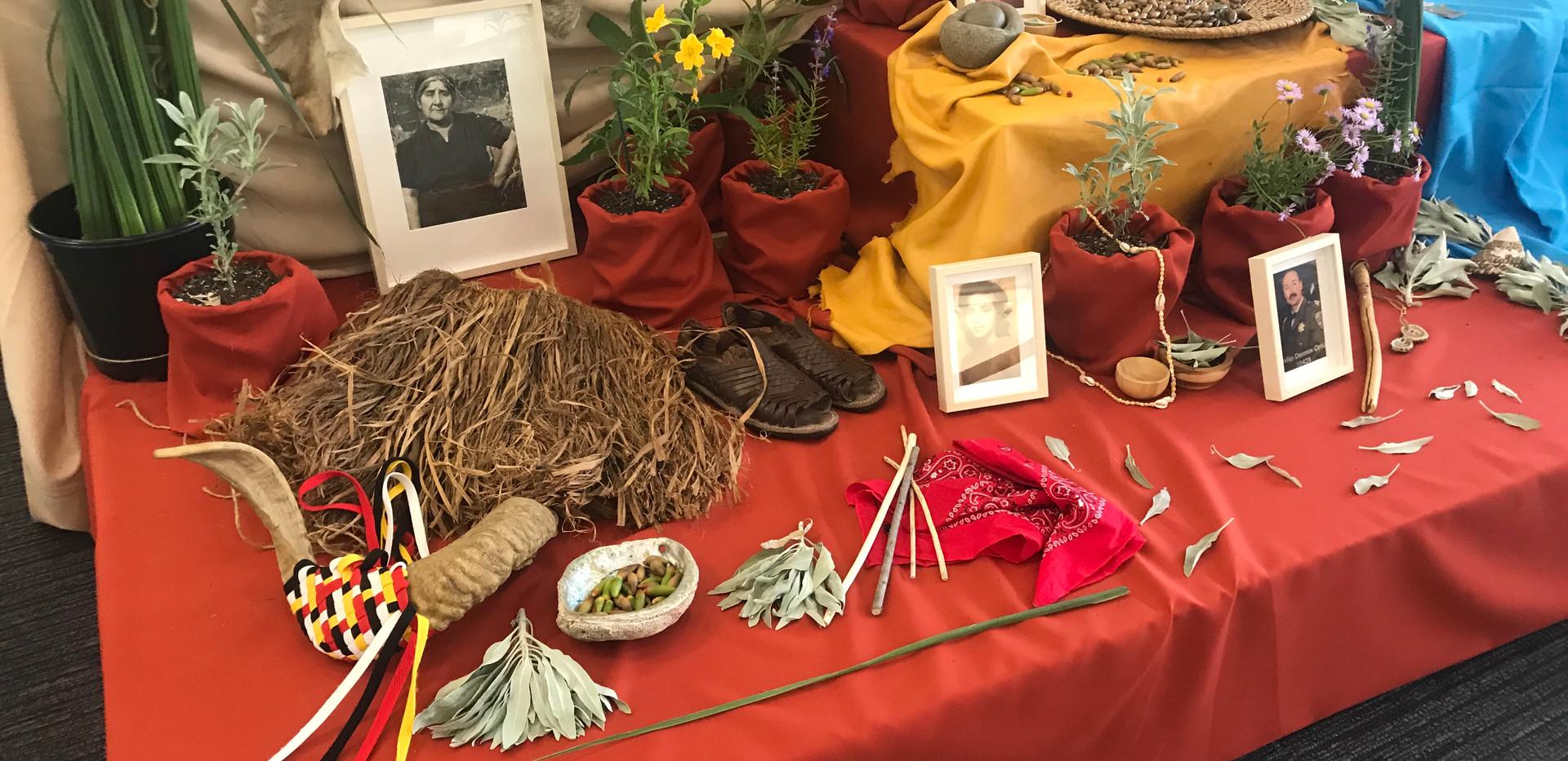 Yaanga Vive! Altar with California native plants