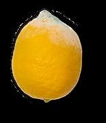 lemon-waste.png