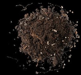 Soil-Top-View-v3.png