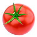Tomato-2.png