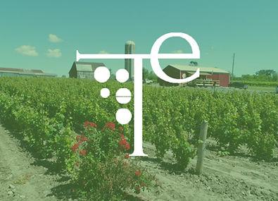 Terra Estate Winery