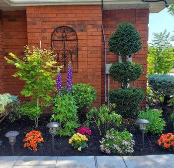 organic-fertilizer-garden-results-nurtur