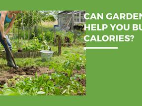 Can Gardening Help You Burn Calories?