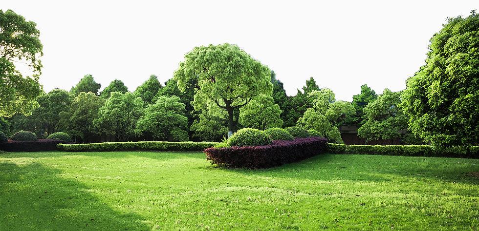 organic-fertilizer-lawn-background-nurtu