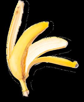banana-waste.png