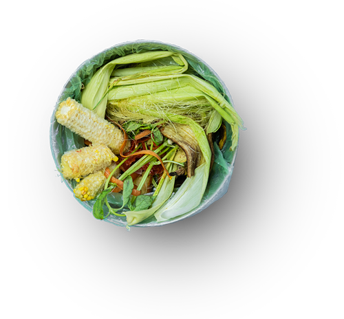 Food-Waste-Image-with-shadow-500.png