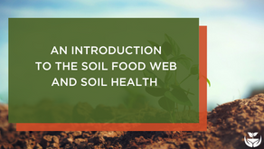 An Introduction to the Soil Food Web and Soil Health