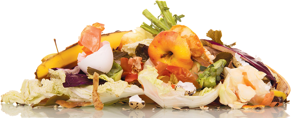 food-waste-from-trash-1.png