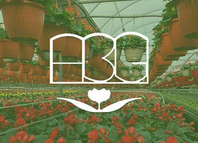 Antonio Bajar Greenhouses