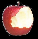 apple-waste.png
