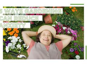 5 Ways Gardening Can Reduce Anxiety
