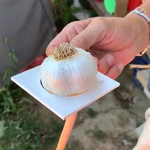 organic-fertilizer-food-4-life-garlic-fi