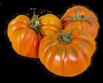 view-beautiful-red-heirloom-tomatoes-yel