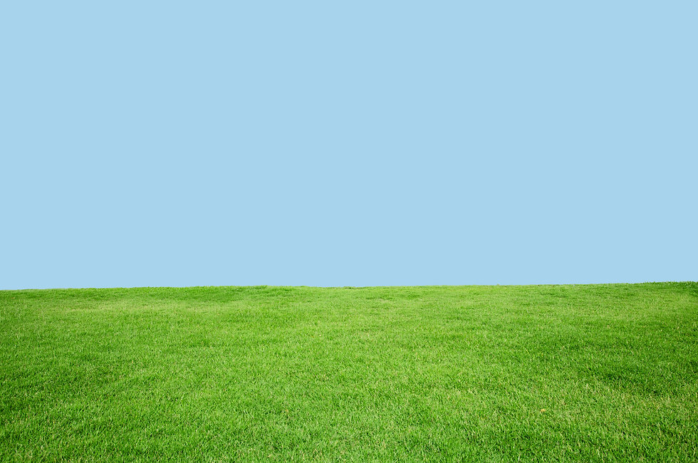 Field-With-blue-sky.jpg