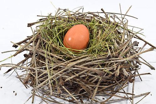 STEM Kit: Bird Nest!