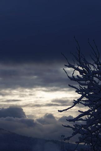 Nature (33).jpg