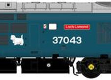Accurascale Class 37/0 37043 Loch Lomond BR Large Logo Livery
