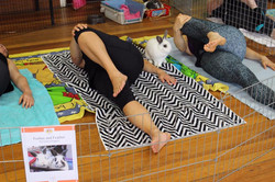 Bunny yoga Dec 2017