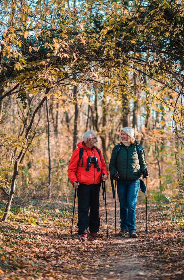 Can you walk and talk at the same time? Dual Tasking and Mild Cognitive Impairment