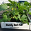 Thumbnail: Handy Bed 2 x 3 Square Foot Design, Stack-able, White, Vinyl, Raised Garden Bed