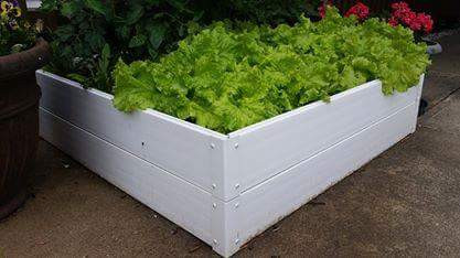 Garden Beds Designed for Durability