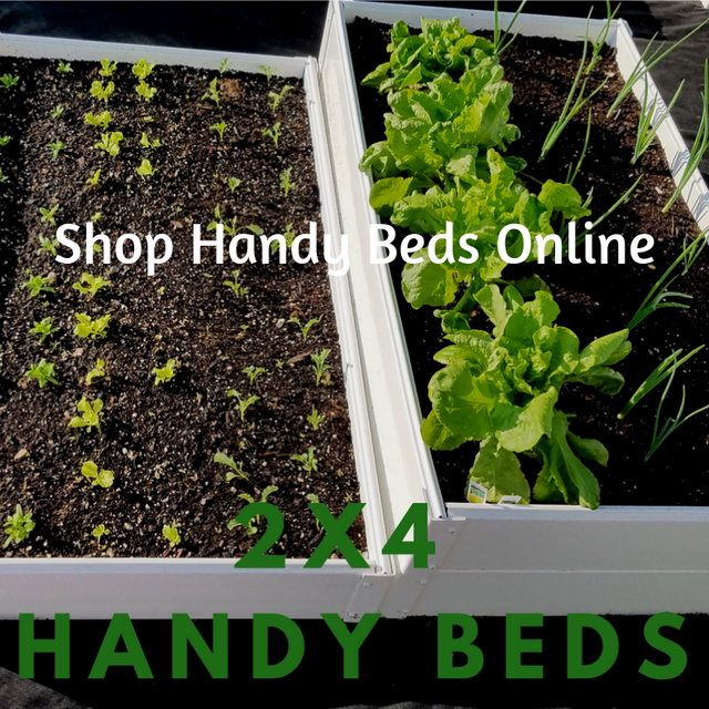 Shop Handy Beds Online (1).png