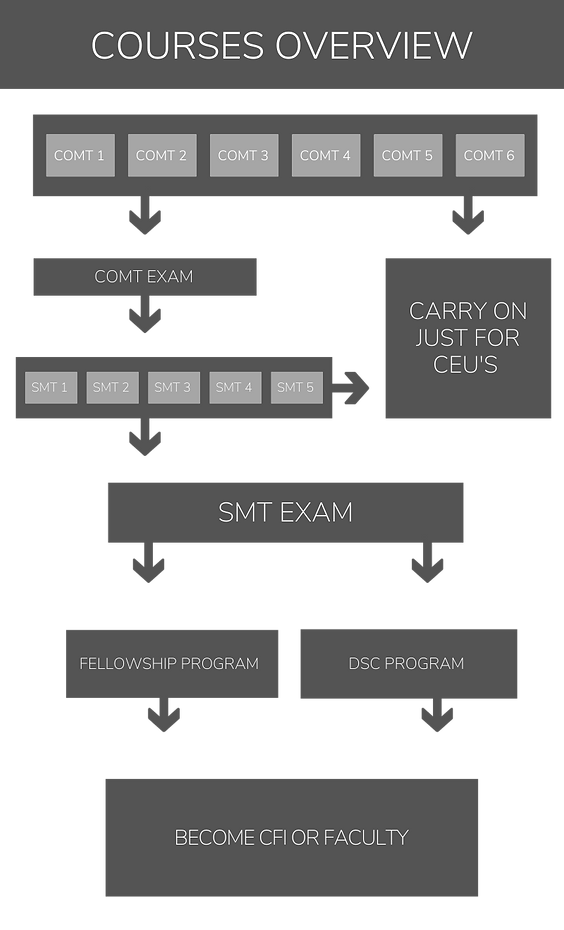 (without background)courses overview.png