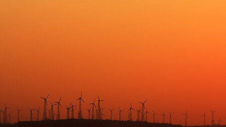 Indian renewable energy sector's performance during the COVID-19 lockdown