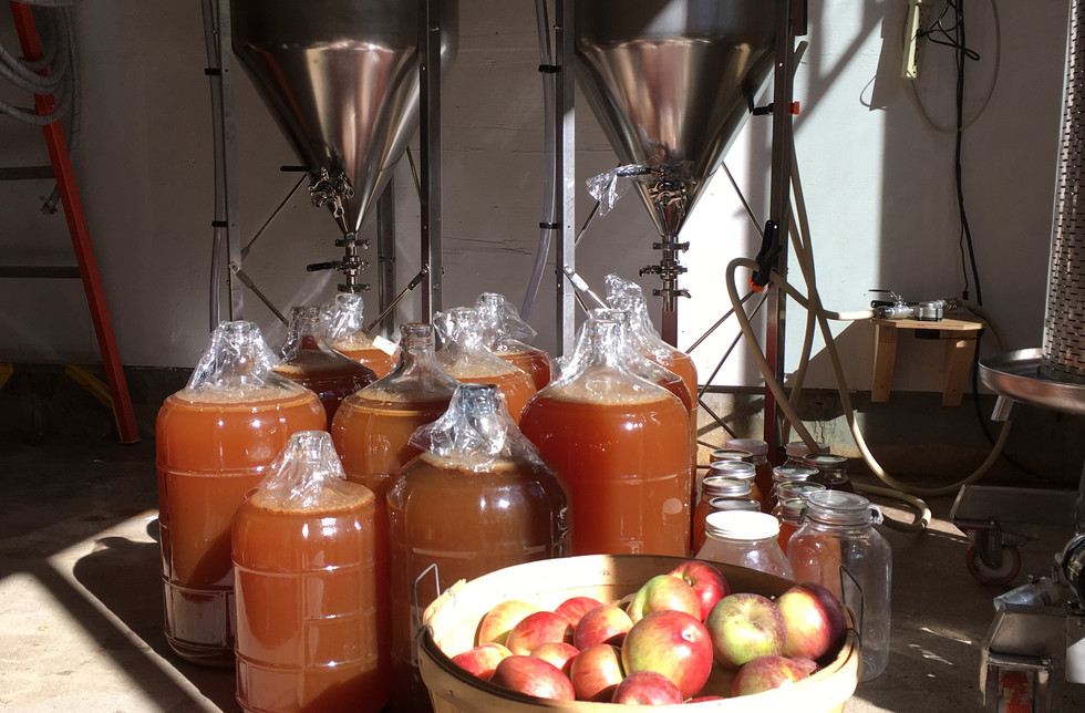 #3A transition from tree to cider.jpeg