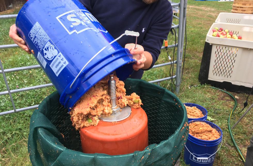 #4 7 pails of ground pulp per pressing .