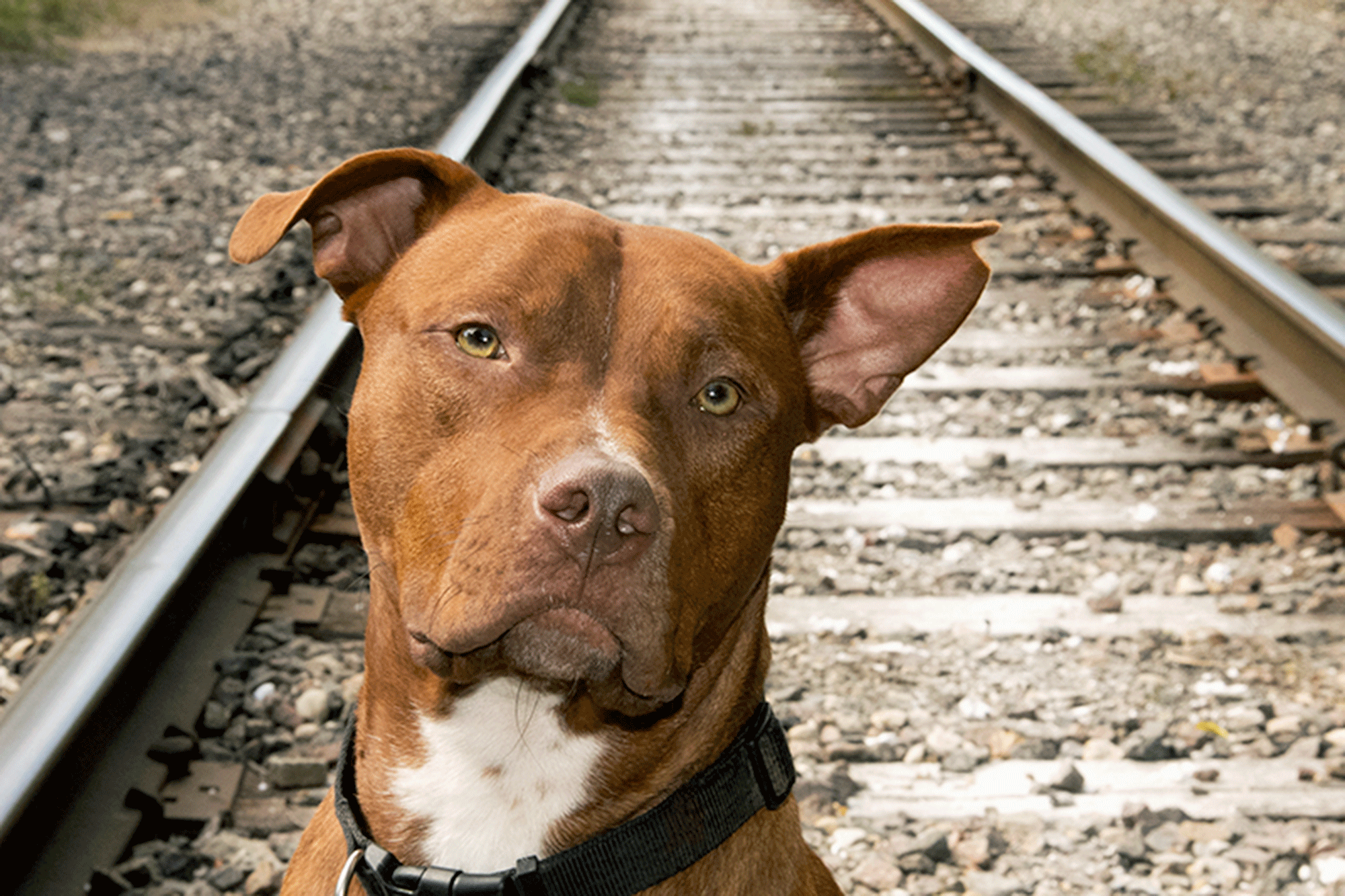 Railroad-Tyson