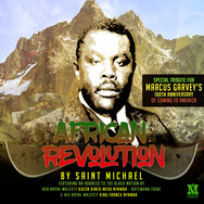africanrevolution.jpg