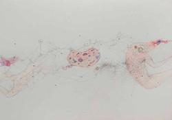 13a. Recto, watercolour, pencil, 23.30 cm, 2015